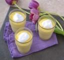 Mousse à l'ananas - Pineapple mousse